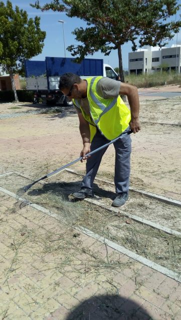 7 personas contratadas en Empleo Público Local trabajan en el mantenimiento de parques y jardines - 4, Foto 4