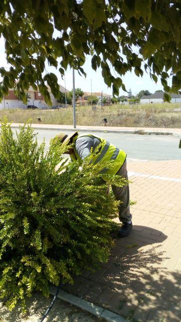 7 personas contratadas en Empleo Público Local trabajan en el mantenimiento de parques y jardines - 5, Foto 5