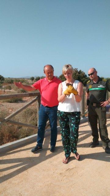 La Comunidad recupera el área recreativa y el mirador de Saladares de Guadalentín para uso público, Foto 2