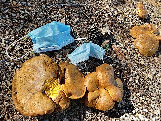 Ponen en marcha una campaña contra los residuos de elementos de protección contra la Covid en espacios naturales, Foto 1