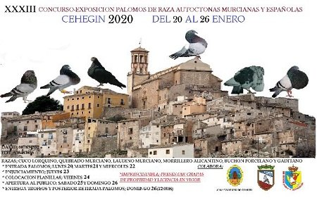 Este fin de semana se celebra el XXXIII Concurso-Exposición de palomos de Raza Autóctonas Murcianas y Españolas - 1, Foto 1