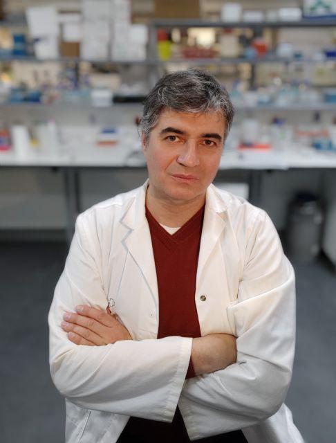 Importantes avances en la eficacia de la vitamina C para tratar cánceres persistentes - 1, Foto 1