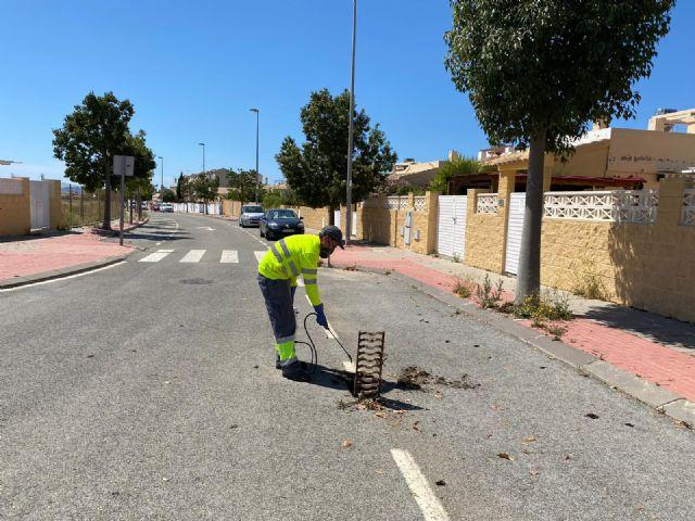 El Ayuntamiento recuerda la importancia de la colaboración ciudadana en la lucha contra el mosquito tigre - 3, Foto 3