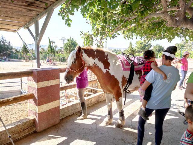 Terapia con caballos para estimular el desarrollo infantil, Foto 7