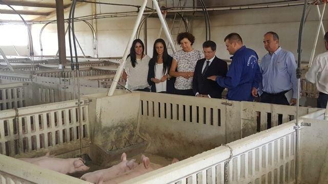 Agricultura invierte casi 400.000 euros en actuaciones de depuración y saneamiento en el municipio de Puerto Lumbreras - 2, Foto 2
