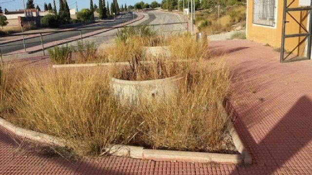 Estado de abandono del Centro Municipal de Formación y Empleo de Las Torres de Cotillas - 2, Foto 2