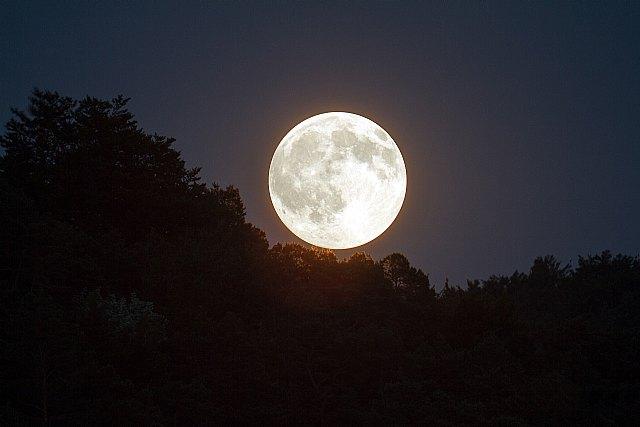 Charlas con Luna, V - 1, Foto 1