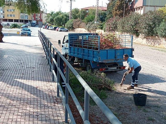 Brigada municipal: trabajos del 20 octubre