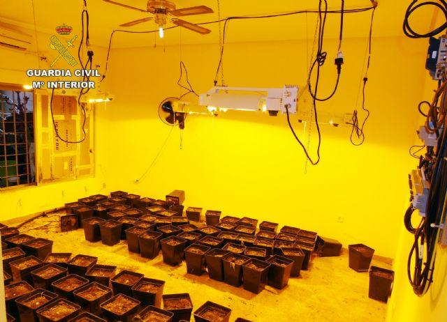 La Guardia Civil desmantela un punto de cultivo de marihuana en un chalet de La Manga - 2, Foto 2