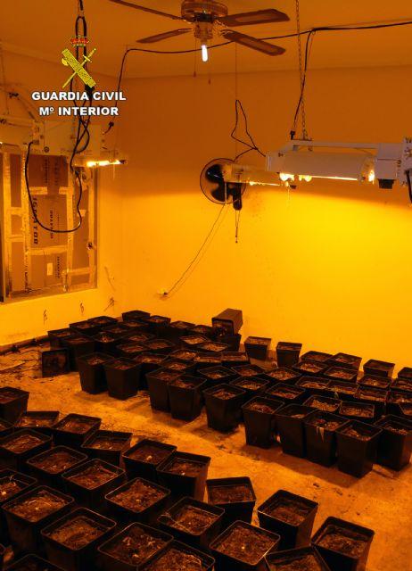 La Guardia Civil desmantela un punto de cultivo de marihuana en un chalet de La Manga - 3, Foto 3