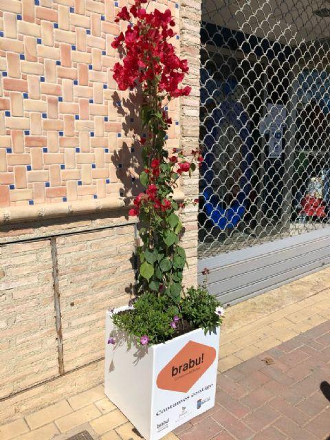Bullas se viste de primavera con los maceteros que regala la Concejalía de Comercio - 1, Foto 1