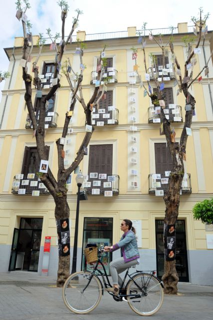El Museo Ramón Gaya viste la Plaza de Santa Catalina con portadas de ´El Quijote´ y retratos de Cervantes para celebrar el Día del Libro - 2, Foto 2