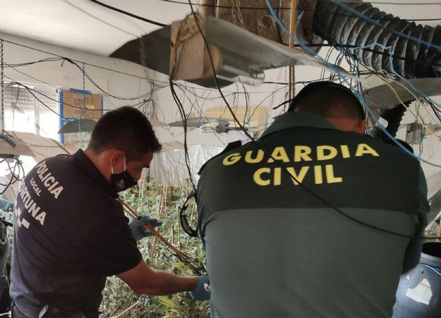 La Guardia Civil desmantela un invernadero de marihuana con más de 200 plantas en Fortuna - 1, Foto 1