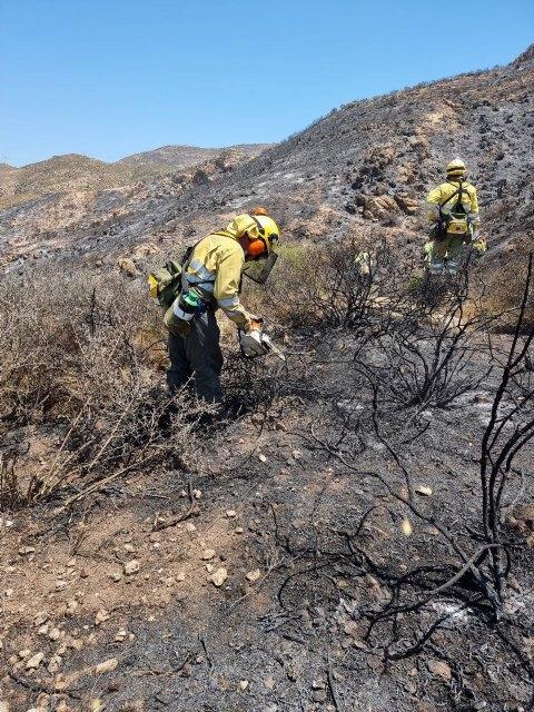 Operativo del Plan Infomur ha extinguido un incendio forestal declarado en el Barranco del Feo (Cartagena) - 2, Foto 2