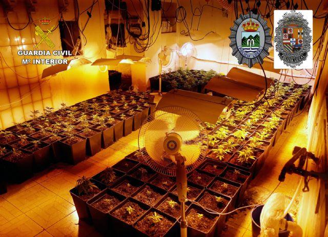 Desmantelada en Abanilla una plantación indoor con cerca de 300 plantas de marihuana - 3, Foto 3