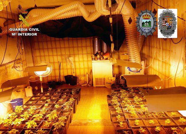 Desmantelada en Abanilla una plantación indoor con cerca de 300 plantas de marihuana - 4, Foto 4