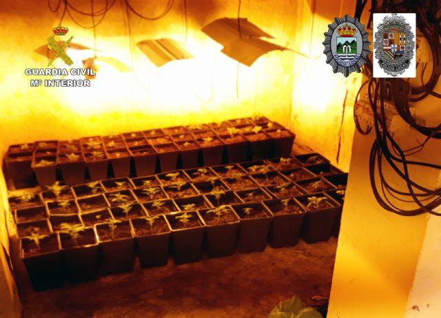 Desmantelada en Abanilla una plantación indoor con cerca de 300 plantas de marihuana - 5, Foto 5