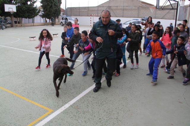 La Guardia Civil organiza una exhibición en el colegio Asunción Jordán de Puerto Lumbreras - 4, Foto 4