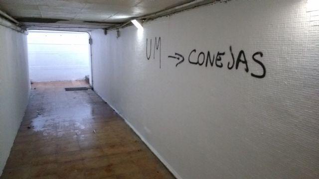 Asociación de Vecinos Nuevo Entorno Barrio de San Basilio denuncian pintadas y destrozos en tunel entre los barrios de San basilio y San Antón - 2, Foto 2
