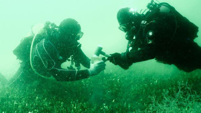 Analizan las consecuencias de la presión humana en el Mar Menor - 2, Foto 2