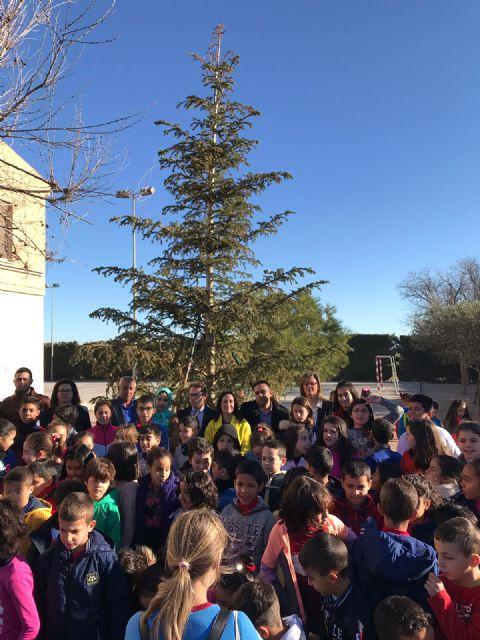 El colegio Entretierras de Torre Pacheco recibe el árbol de Navidad de la Consejería de Educación tras ganar el concurso de adornos - 1, Foto 1