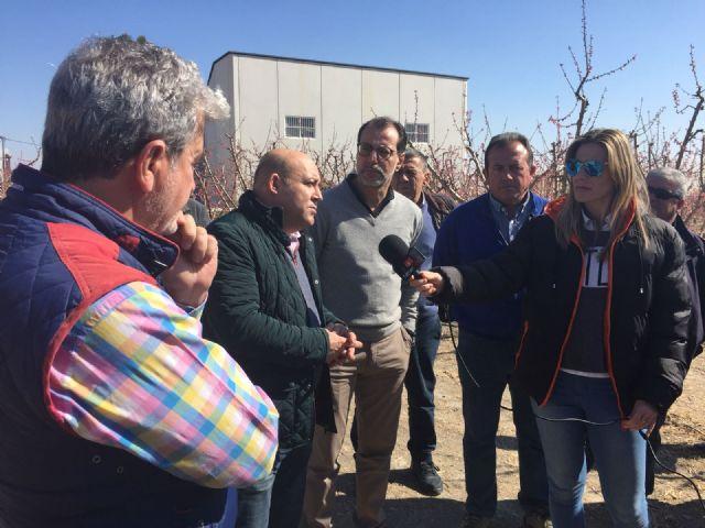Comunicado Partido Socialista sobre la situación de nuestros campos y las bajas temperaturas - 2, Foto 2