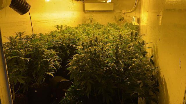 La Policía Local incauta en un polígono industrial un centenar de plantas de marihuana - 1, Foto 1