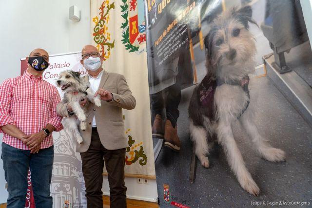 La campaña Ladridos que Salvan Vidas conciencia sobre el libre acceso de perros de alerta médica - 1, Foto 1