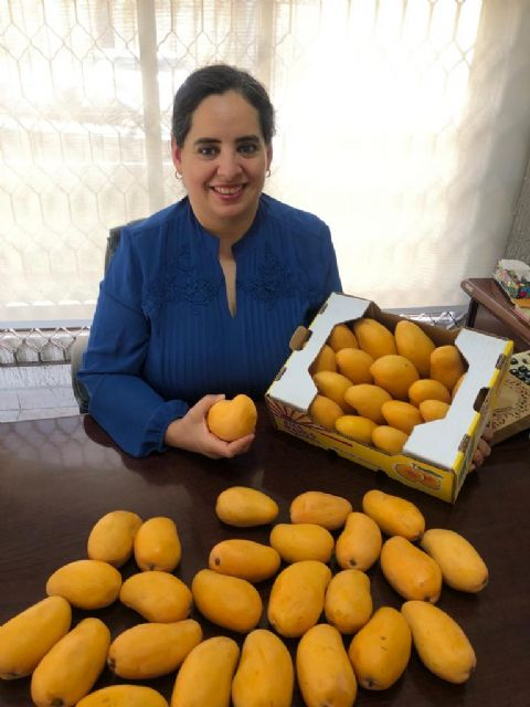 Japón es un mercado atractivo para los mangos de México donde queremos incrementar nuestras exportaciones - 1, Foto 1