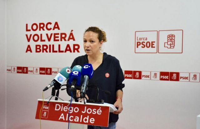 Isabel Casalduero Pedimos al Partido Popular que deje de mentir y manipular con el tema de las viviendas de San Fernando - 1, Foto 1