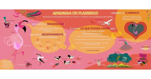 """La Asociación Región de Murcia Limpia inicia proyecto """"Apadrina un Flamenco"""" en el Parque Regional de las Salinas de San Pedro del Pinatar - 1, Foto 1"""