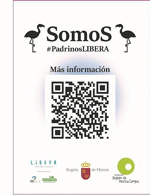 """La Asociación Región de Murcia Limpia inicia proyecto """"Apadrina un Flamenco"""" en el Parque Regional de las Salinas de San Pedro del Pinatar - 3, Foto 3"""