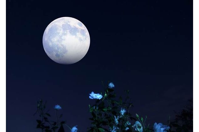 """La última superluna del año: llega la """"luna de fresa"""" - 1, Foto 1"""