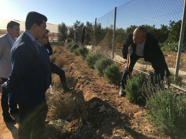 El consejero de Agricultura, Francisco Jódar  visita El Mirador para conocer in situ el adelanto de algunas medidas recogidas en el decreto  ley sobre sostenibilidad ambiental en el entorno del Mar Menor - 2, Foto 2