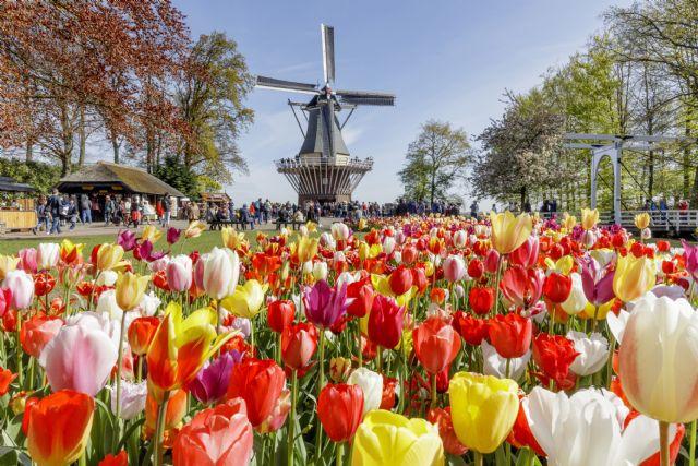 CroisiEurope amplia su oferta early booking en sus fluviales de Semana Santa por Holanda