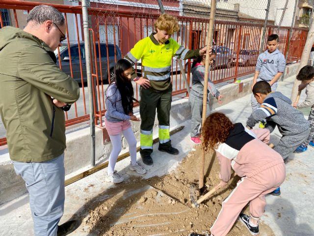 El colegio Francisco Salzillo de Los Ramos se suma a la plantación de nuevo arbolado gracias al Plan Foresta - 2, Foto 2