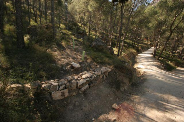 Medio Ambiente finaliza las actuaciones de recuperación ambiental en el sendero Zig Zag del Cerro de La Atalaya en Cieza - 1, Foto 1