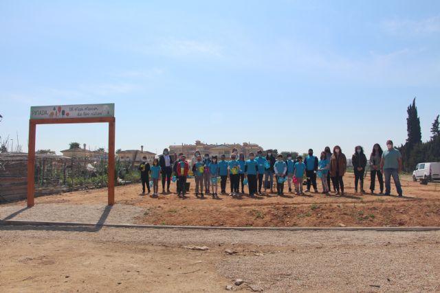 El Ayuntamiento y la comunidad escolar inician la plantación de la pinada El Mar Menor de los niños - 1, Foto 1