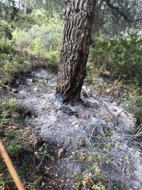 Efectivos del Plan Infomur se encuentran trabajando en un incendio forestal declarado en el paraje El Carretero, en Totana - 1, Foto 1