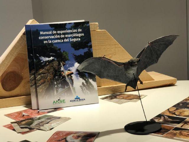 Aguas de Murcia y ANSE publican un manual de conservación de murciélagos - 2, Foto 2