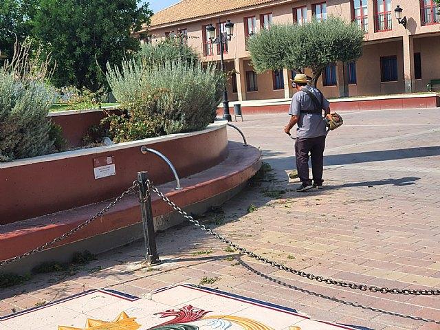 La concejalía de Urbanismo inicia la limpieza de solares y advierte de las obligaciones de mantenerlos limpios - 2, Foto 2