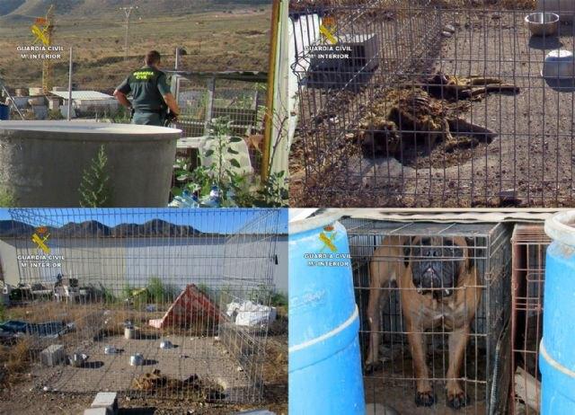 La Guardia Civil investiga al propietario de un criadero de perros de Mazarrón por delito de maltrato animal - 1, Foto 1
