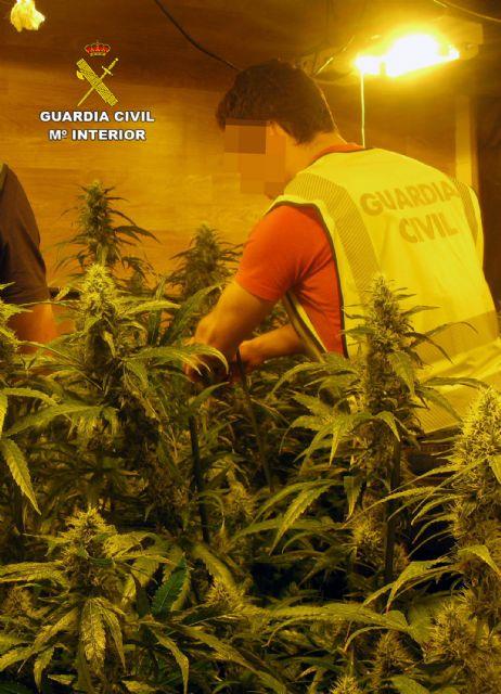 La Guardia Civil desmantela una plantación indoor de marihuana en Librilla - 1, Foto 1