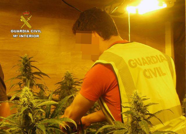 La Guardia Civil desmantela una plantación indoor de marihuana en Librilla - 2, Foto 2
