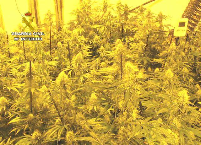 La Guardia Civil desmantela una plantación indoor de marihuana en Librilla - 3, Foto 3