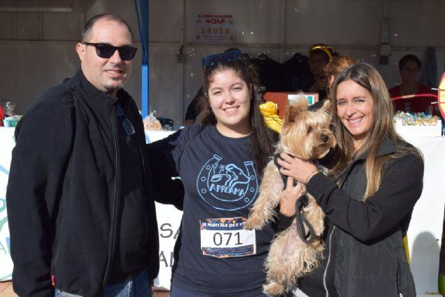 Un centenar de dueños con sus perros participan en la II marcha Por ellos de APROAMA - 1, Foto 1