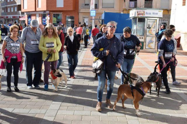 Un centenar de dueños con sus perros participan en la II marcha Por ellos de APROAMA - 3, Foto 3