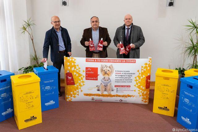 El Ayuntamiento de Cartagena pone en marcha dos campañas ciudadanas para mejorar el reciclado y eliminar las molestias de las micciones caninas - 1, Foto 1