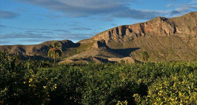 Santomera solicita la protección de la parte murciana de la Sierra de Orihuela - 1, Foto 1