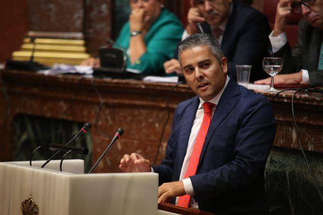 El PP solicita al Gobierno de España medidas extraordinarias para ayudar al sector de la flor cortada - 1, Foto 1